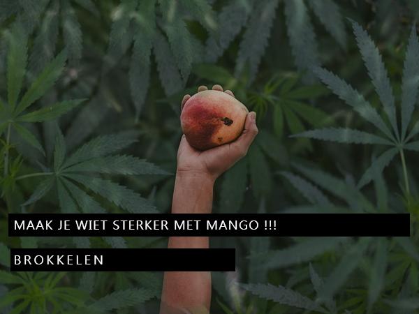 Maak je Wiet sterker met Mango !!!
