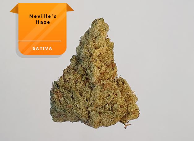 Nevils-Haze
