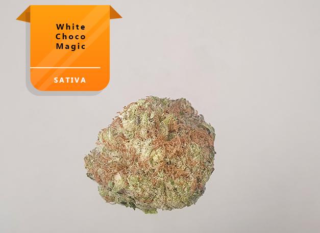 White-Choco-Magic