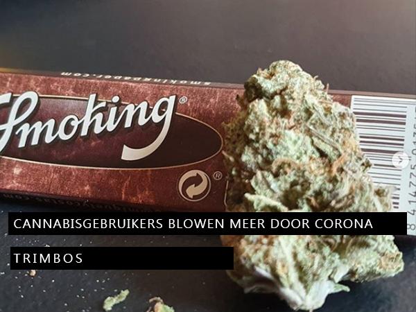 Cannabisgebruikers blowen meer door corona
