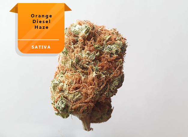 Orange-Diesel-Haze