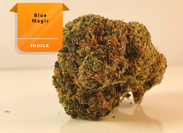 Blue-Magic strain