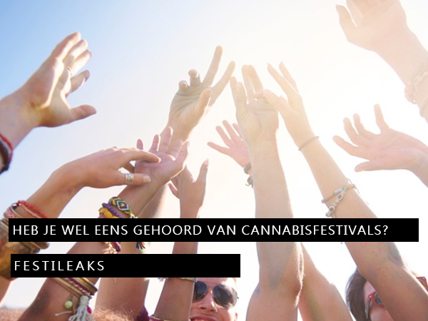 wiet-festivals