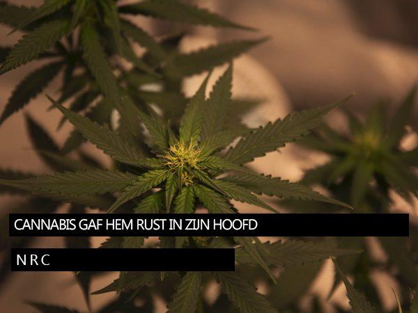 Cannabisenrust