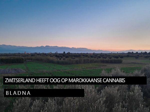 zwiterland-marocco